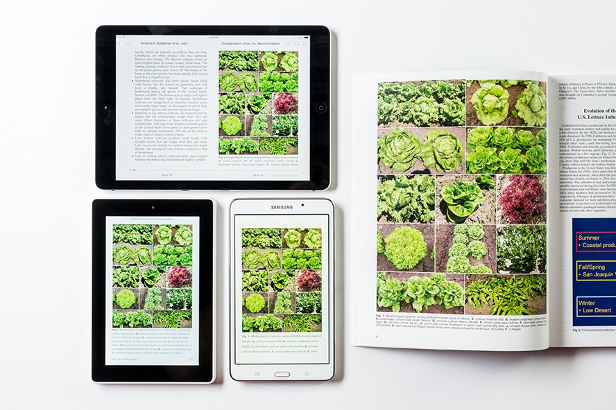 Compendium of Lettuce Diseases and Pests, 2nd Edition